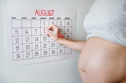 belly-calendar-countdown-1282310